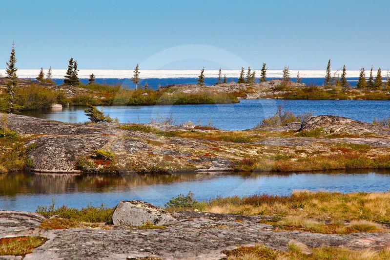 (680) Near Kuujjuarapik, Nunavik, overlooking ice-covered Hudson Bay