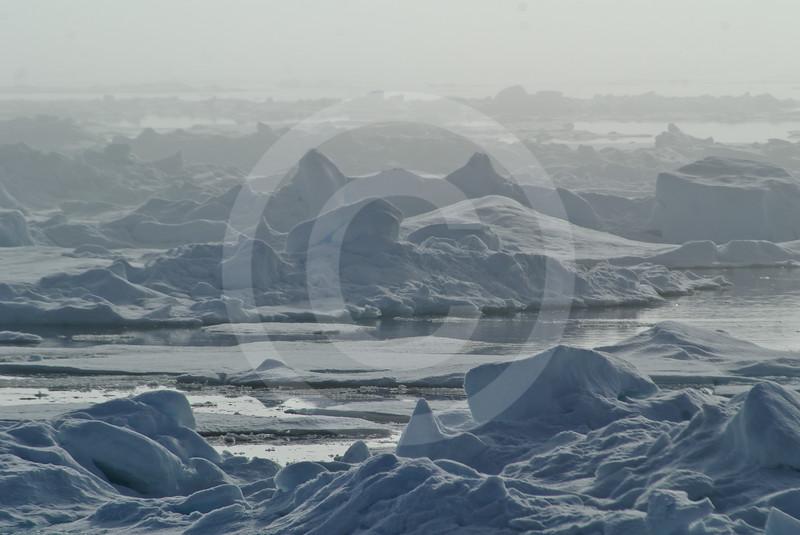 (577) Sea ice