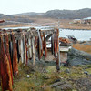 (23) Arctic charr drying in Bathurst Inlet