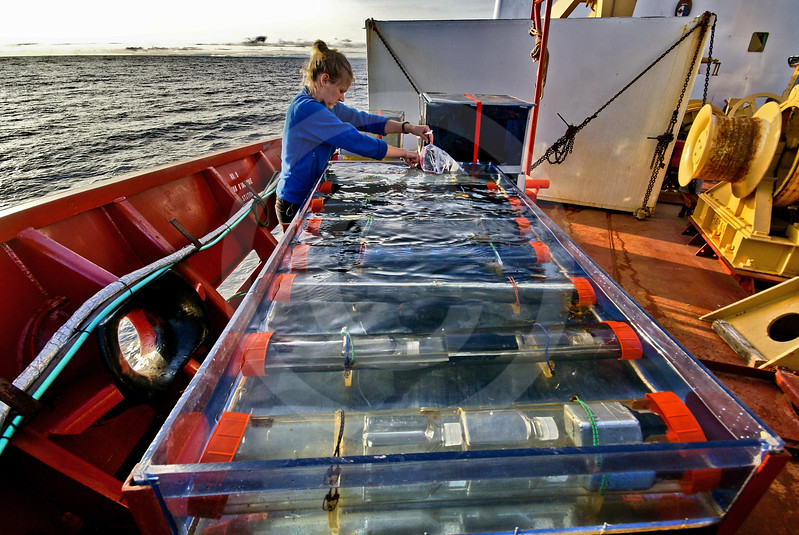 (221) An ArcticNet scientist collects samples in a foredeck incubator on board the CCGS Amundsen