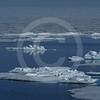 (608) Sea ice