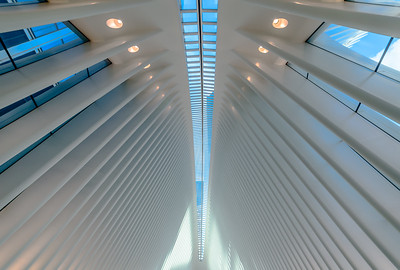 The Oculus , NYC