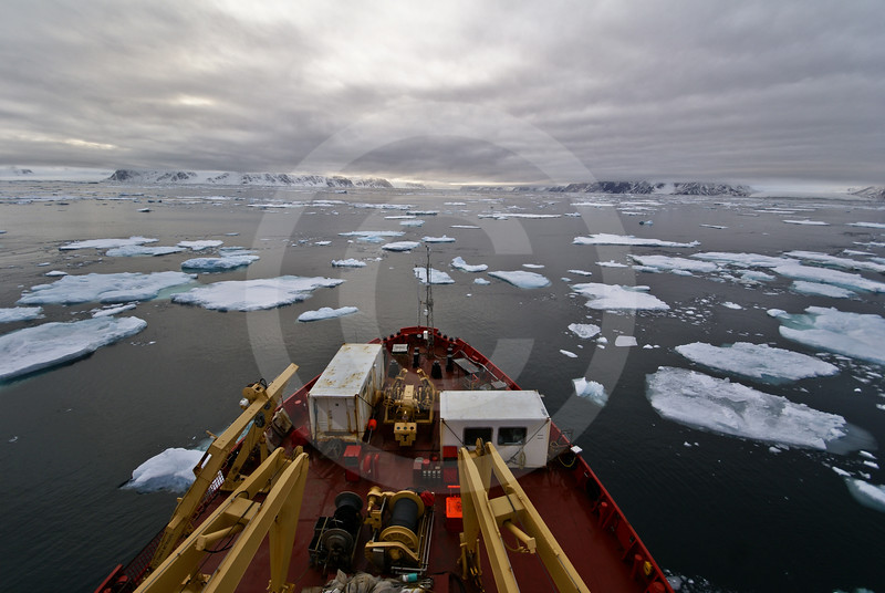 (252) CCGS Amundsen sailing in drifting pack-ice along the shores of Ellesmere Island, Nunavut