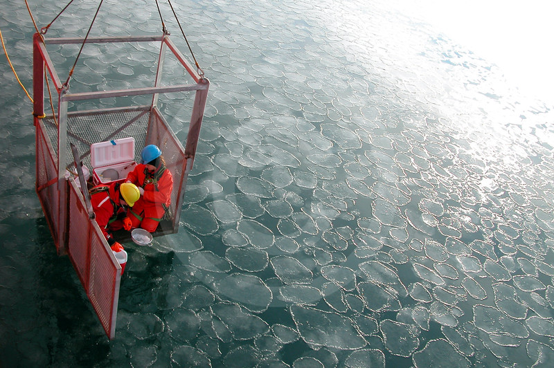 (52) Scientists sampling sea ice