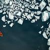 (2322) Understanding the break up of sea ice by waves