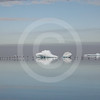 (187) Seabirds and ice in Lancaster Sound, Nunavut