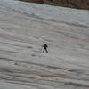 (2342) Alone on the glacier