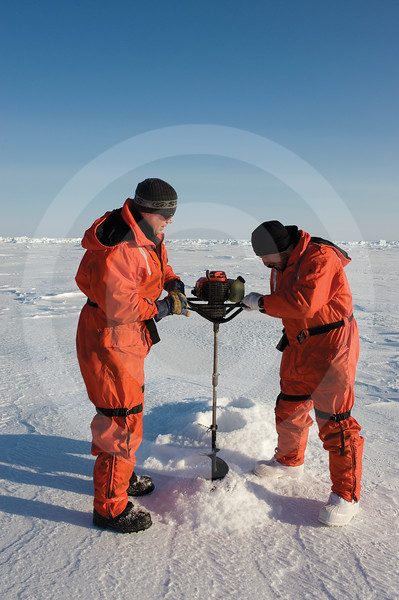 (346) Scientists drilling into the thick pack ice to measure ice thickness during the CFL program