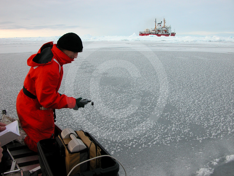 (31) Scientist taking ice measurement
