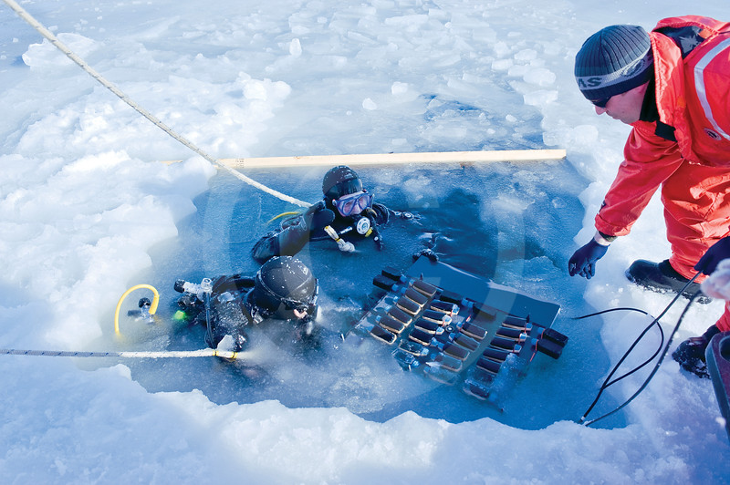 (347) Scientists and fellow divers collect marine samples directly under the ice during the CFL program