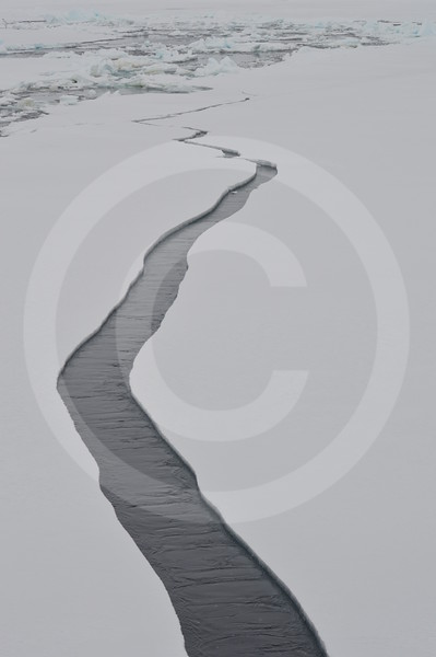 (2110) Sea ice north-east of the Svalbard archipelago