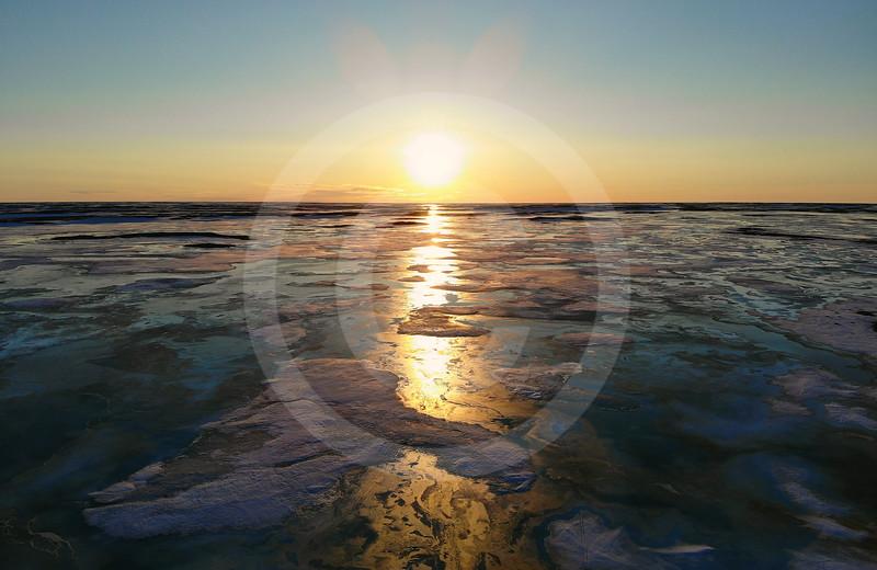(2251) Arctic Light