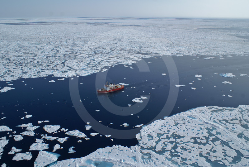 (619) CCGS Amundsen