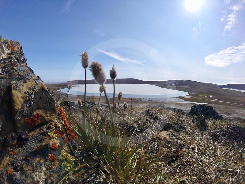 (2250) East Lake Views