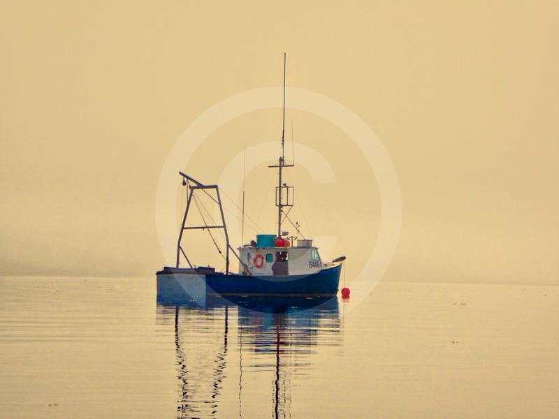 (2226) Arctic paint Deception Bay