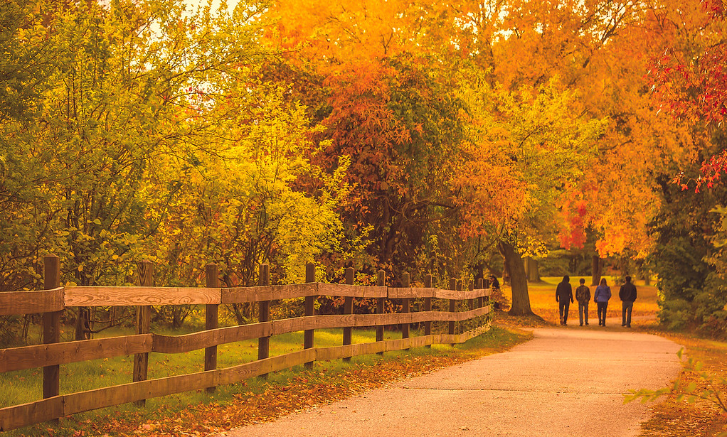 Gorgeous fall colors, Belmont Lake State Park