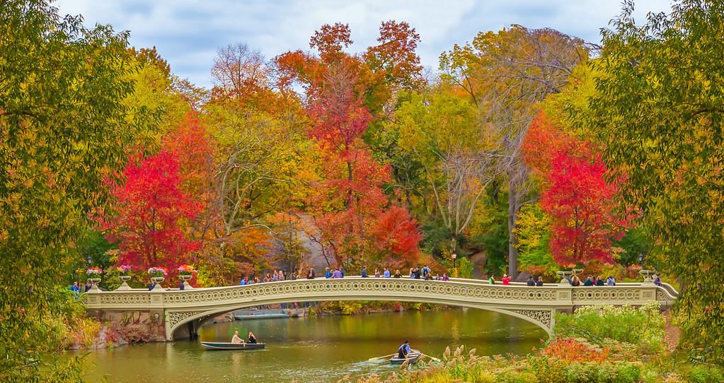 Bow Bridge, Central Park, NYC