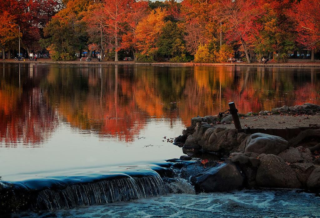 Fall Colors on Long Island