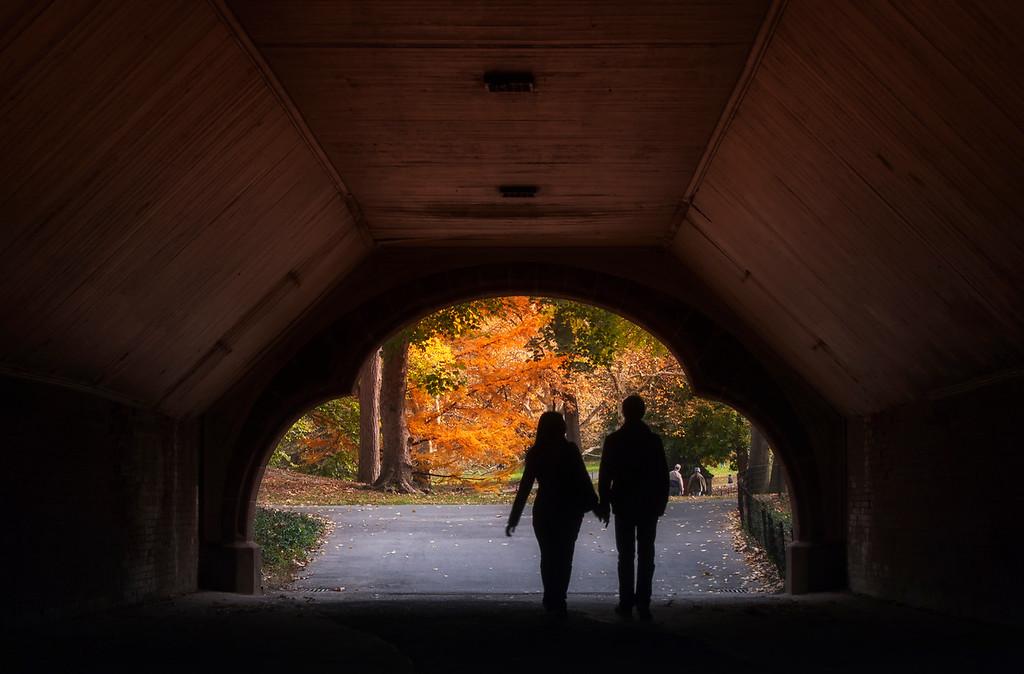 Autumnal Archway