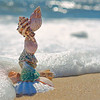 Stacking sea shell on the seashore