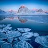 (2265) Svalbard