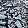 (84) Arctic Ice