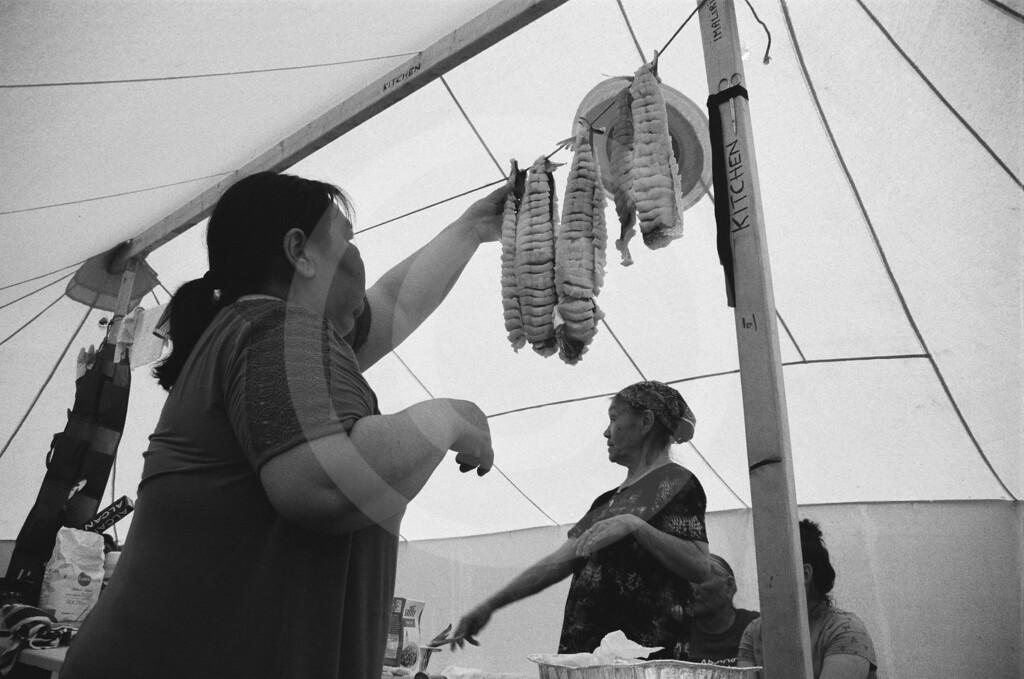 Greenlandic dog shed - Wilson Cheung
