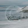 (132) Inuit community of Resolute Bay, Nunavut
