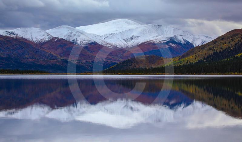 (700) Yukon Landscape