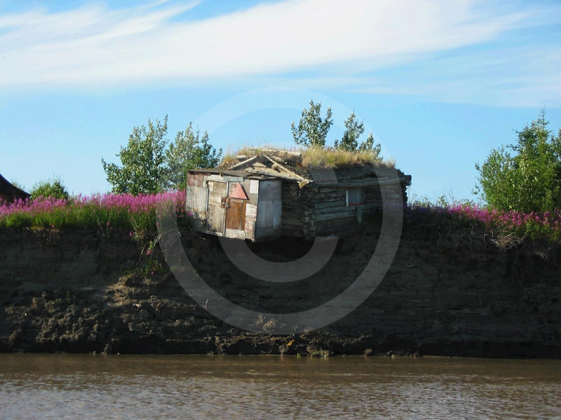 (196) Coastal erosion and permafrost melt on the banks of the Mackenzie River near Inuvik