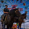 Thrills and Excitement with NYPD Mounted Unit