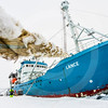 "(1032) The Norwegian Polar Research vessel ""Lance"" attached to sea ice in the Fram Strait"