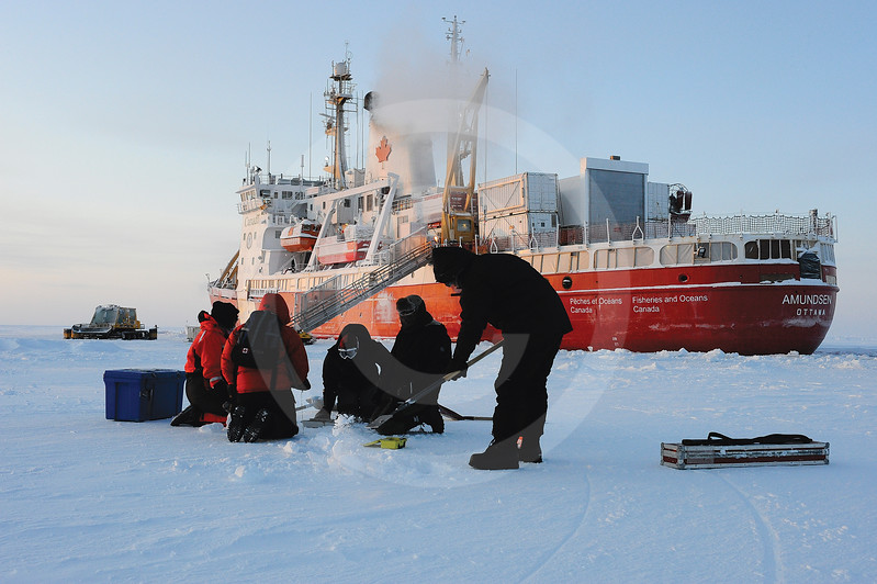 (333) Scientists measure ice thickness and temperature during the CFL program
