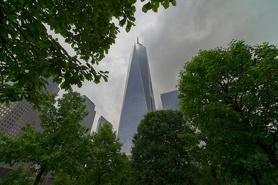 One World Trade Center from 9/11 Memorial Park