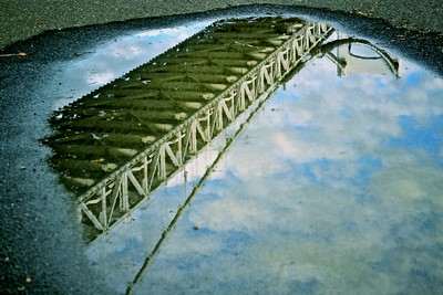 the world through a puddle #3