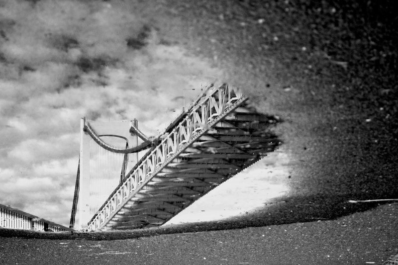 the world through a puddle #1