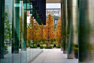 an urban autumn