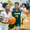 LRHS VAR Girls vs Lakewood-7469