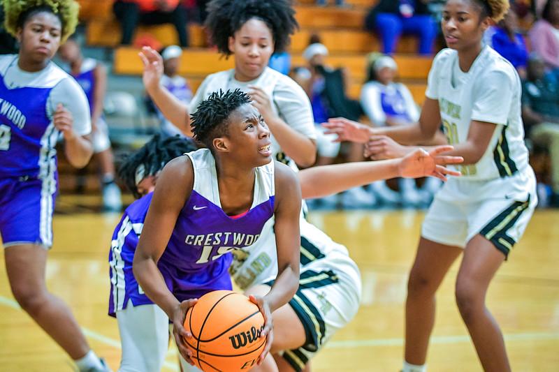 LRHS VAR Girls vs Crestwood-4223