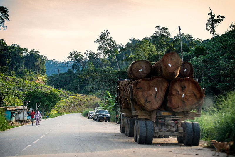 Gabon to China. Cutting trees and exporting to China.