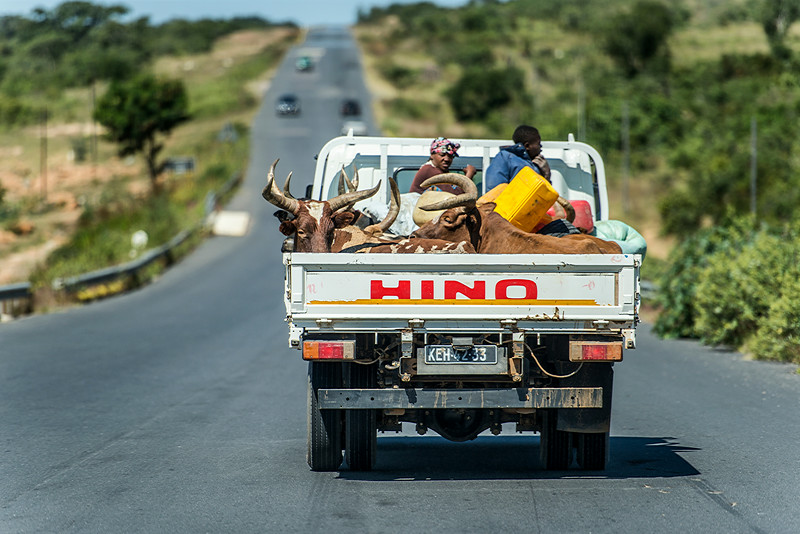 Public transportation in Angola
