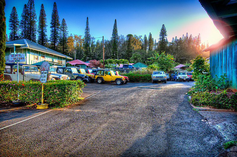 Early morning. Dollar rent a car. Lanai. HI<br /> The most expensive car rental i ever seen around the World.<br /> Starting from 135.00 $/day +tax and +insurance. Jeep Wranglers only.<br /> And there no other options to rent somewhere else on this island.<br /> Otherwise - this only one way to see the island... totally worth it!