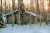 Looking for Kelo log houses in Lapland