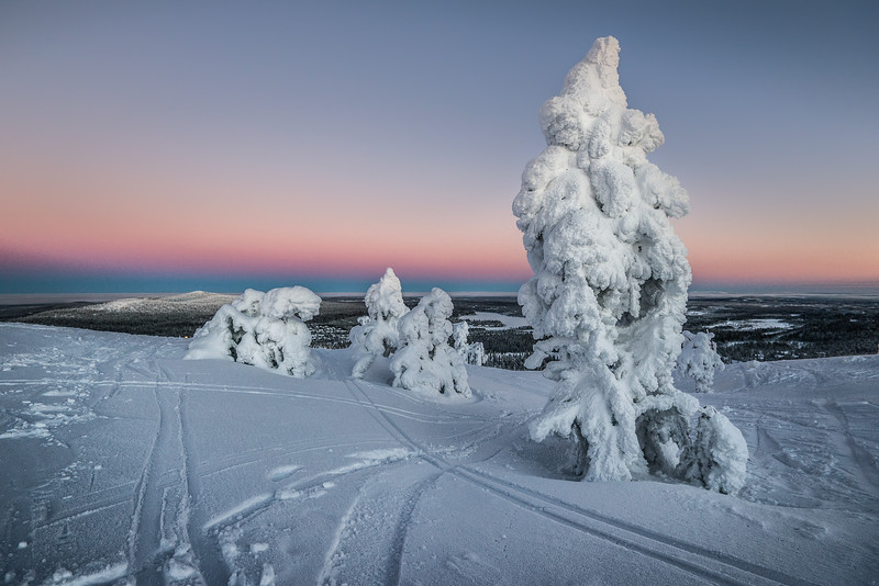 Lapland, where have you been all my life?