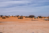 Morning in Mauritania
