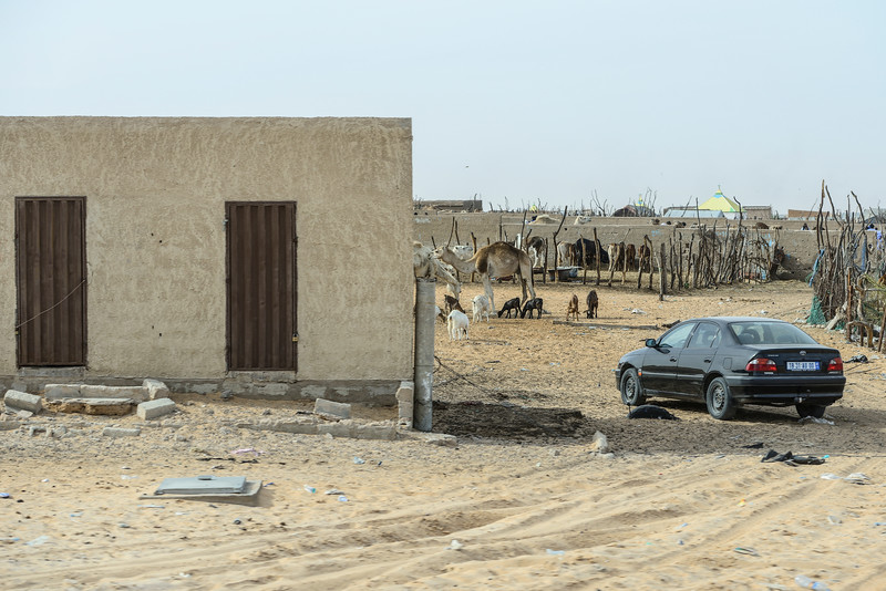On the way to Kiffa. Mauritania.