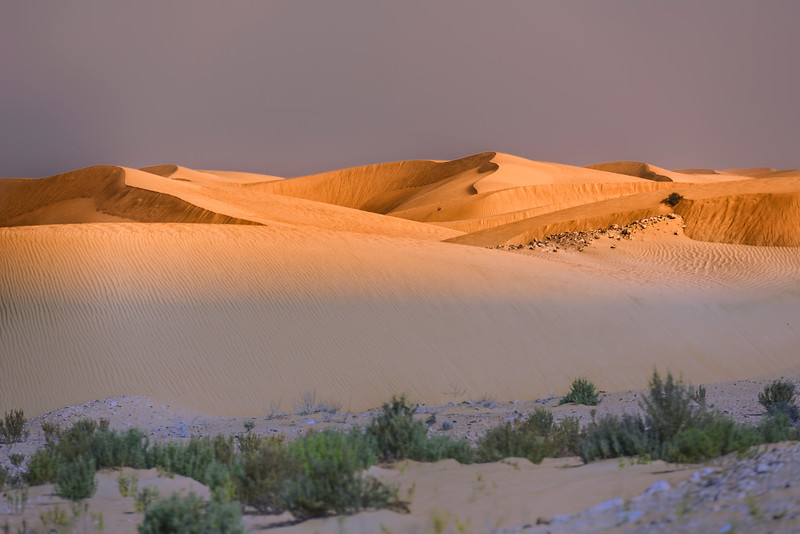 Sunset in the Sahara Desert. Morocco.