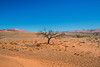 Namibia. Density - 2,6 persons per sq.km...