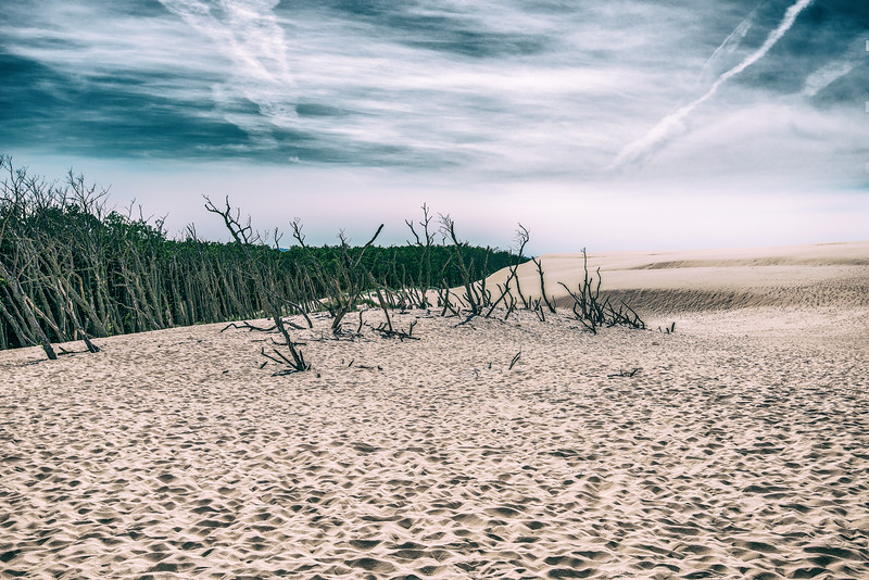Visiting Moving Sand Dunes. Poland.