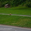 Niagara2009_023